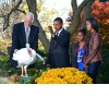 Turkey Pardon!