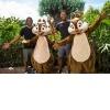 Disney Buds