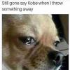Kobe 5