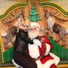 Santa's Helper...