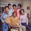 """The Cast of """"Good Times"""""""