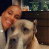 Alicia Keys & Dog