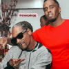 Snoop DOgg & Diddy